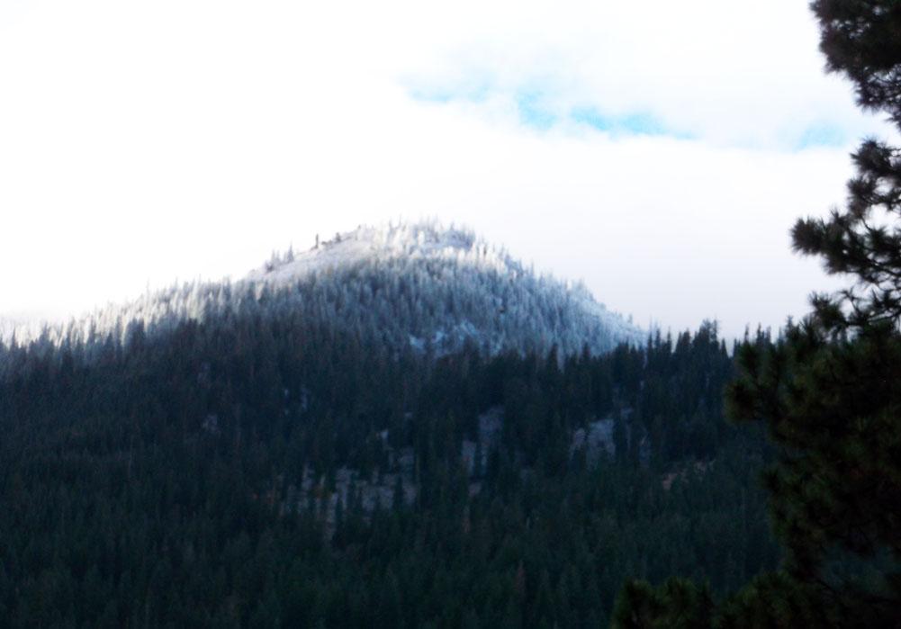Eddys' First Snow