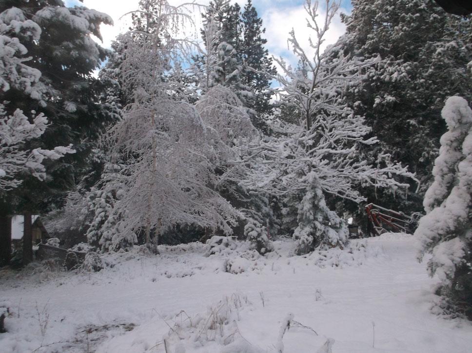 nov-snow-2