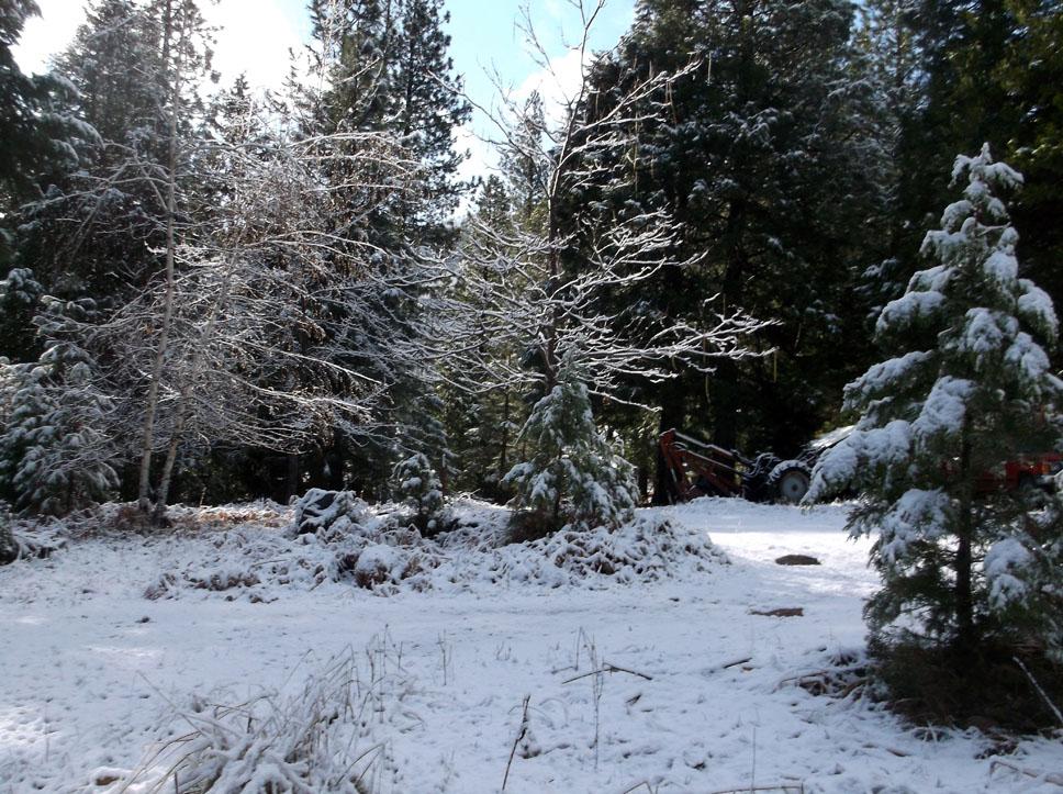 nov-snow-3