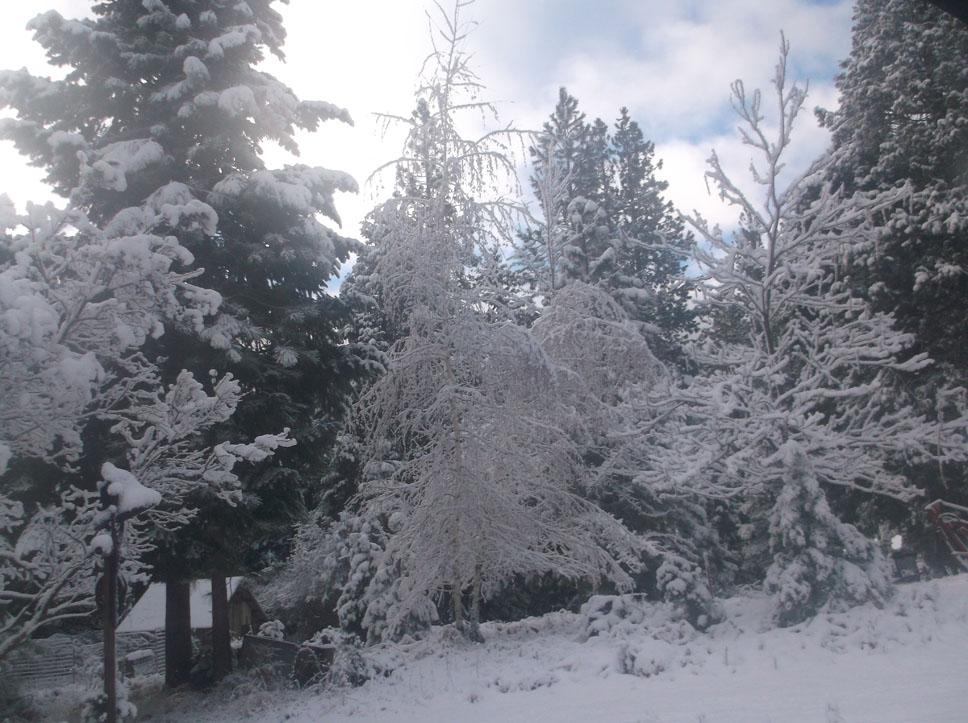nov-snow-4